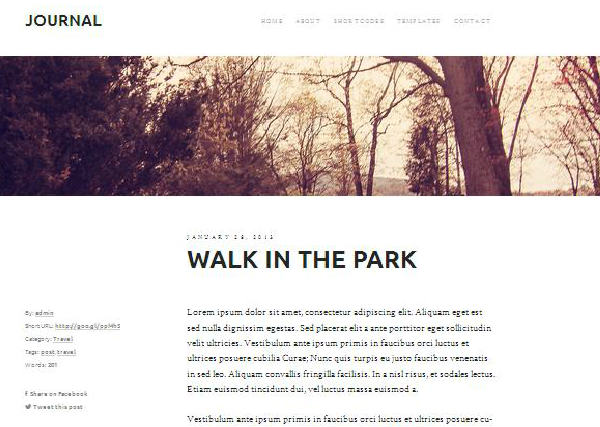 journal responsive wordpress theme