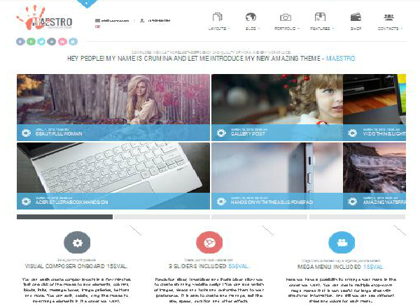 maestro premium wordpress theme
